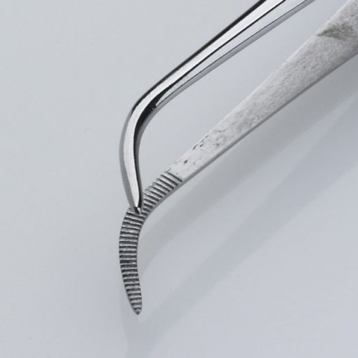 Iris Dissecting Forceps Curved Serrated 11.5cm Product Image Jaws min