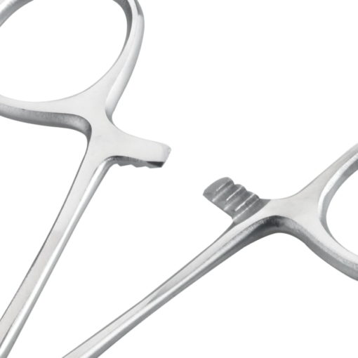 Lock of Single Use Spencer Wells Curved Artery Forceps