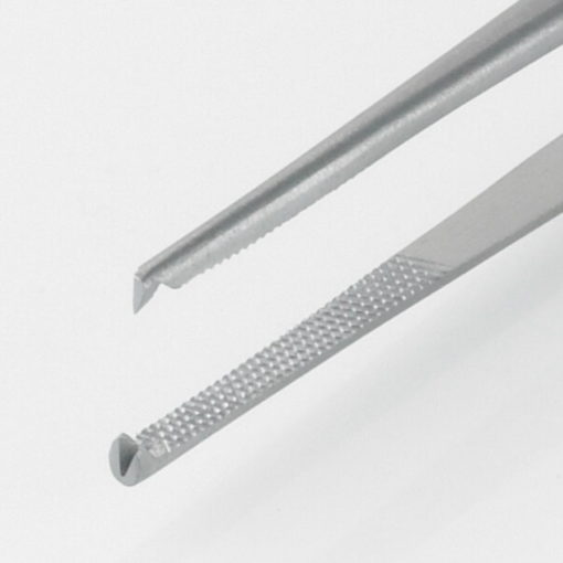 Susol Single Use Waughs Dissecting Forceps 12 Teeth 15cm pk10 Teeth min