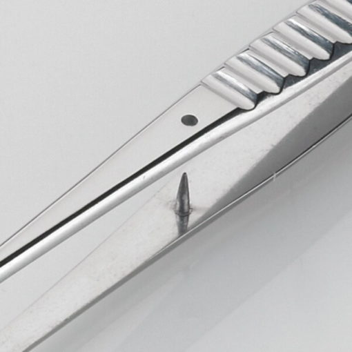 Waughs Dissecting Forceps Serrated 15cm Product Image Pin min