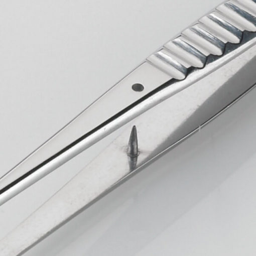 Waughs Dissecting Forceps Serrated 18cm Product Image Pin